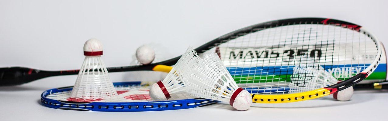 Badminton Wtb Wyker Turnerbund Ev